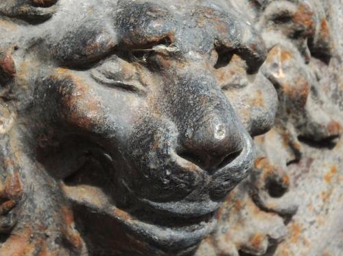 A los leones se les atribuye las características de fuertes, nobles y valientes.